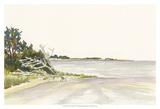 Solitary Coastline II