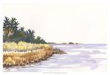 Solitary Coastline IV