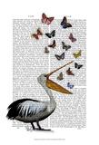 Pelican & Butterflies