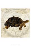 Steam Punk Turtle II