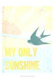 My Only Sunshine II