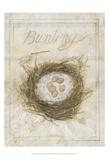 Nest - Bunting
