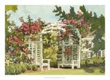 Aquarelle Garden VIII