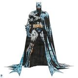 Batman - Info Graphics Design