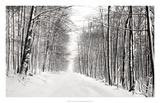 A Snowy Walk III
