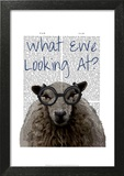 What Ewe Looking At
