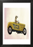 Meerkat in Hot Rod