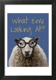 What Ewe Looking At Sheep Print