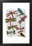 Dragonfly Print 3