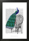 Peacock on Chair