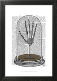 Skeleton Hand In Bell Jar
