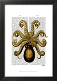 Vintage Yellow Octopus Underside