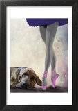 Bloodhound And Ballet Dancer