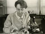 Barbara Mcclintock  in Her Laboratory at Cold Spring Harbor  New York  in 1947