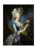 Queen Marie Antoinette with a Rose  1783