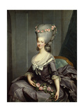 Marie Therese Louise De Savoie Carignan  Princess of Lamballe