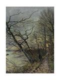 Le Bois Des Roches  Veneux-Nadon  1880