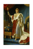 Portrait of Napoleon I in Coronation Robe 1805