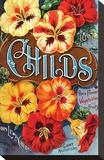 Childs Nasturtium Floral Park