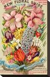 Conard & Jones Floral Guide