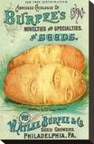 Burpee's Philadelphia Seeds