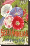 Ferry Seed Annual Detroit MI