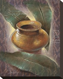 Lost Amphora