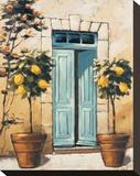 Villa Medici Side Door