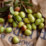 Green Olives on Burlap