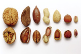 Various Nuts  Shelled and Unshelled