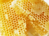 Honeycomb (Close-Up)