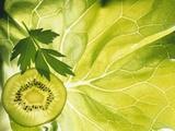 Kiwi Slice and Sprig of Parsley on a Lettuce Leaf