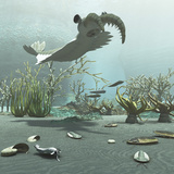 Animals and Floral Life from the Burgess Shale Formation of the Cambrian Period