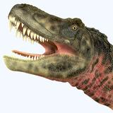 Tarbosaurus Dinosaur Roaring
