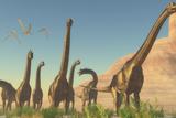 A Herd of Brachiosaurus Travel Near a Canyon Mountain