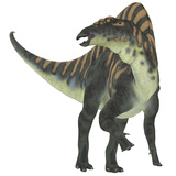 Ouranosaurus Dinosaur  White Background