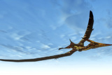Pteranodon Bird Flying in Blue Sky