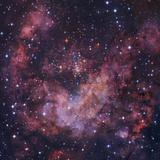 Westerlund 2 Star Cluster in Carina