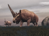 Elasmotherium Dinosaurs Grazing in the Steppe Grass