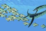 An Elasmosaurus Hunts a School of Bocaccio Fish