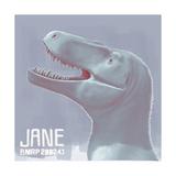 Jane Is a Fossil Specimen of Small Tyrannosaurid Dinosaur