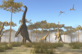 A Brachiosaurus Herd Grazing on Treetops