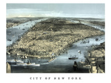 Cityscape View of New York City  Circa 1850