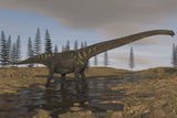 A Large Mamenchisaurus Walking Along a Dry Riverbed