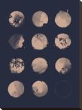 12 Moons