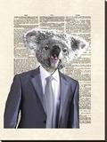 Koala Suit
