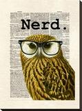 Owl Nerd