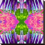 Passion Flower X2