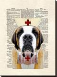 St Bernard Nurse