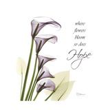 Calla Hope